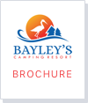 Bayley's Resort Brochure