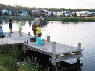 bayleys-resort-fishing-ponds-2
