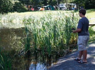 bayleys-resort-fishing-ponds-5