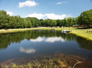 bayleys-resort-fishing-ponds-7